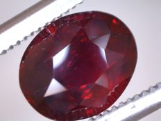 Ruby - 1.56 ct