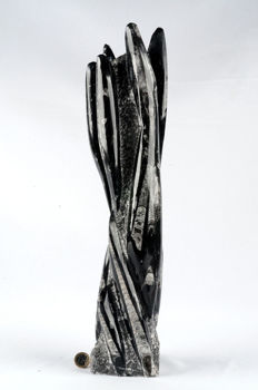 Sculpture in a block of Orthoceras - 7.4 kg - 49 cm
