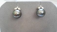 Earrings with Tahitian pearls of 11 mm and brilliants of 0.02 ct, H-SI