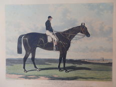 Engraved by C. Hunt Cotherstone Horse according to a drawing by Harry Hall, Newmarket. Published in 1843 by S & J. FULLER, in his Sporting Gallery.