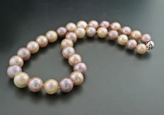 Multicoloured cultivated extra large pearl necklace, diameter 11.5 to 14.5 mm, 585 white gold --- no reserve price ---