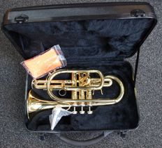 New gold-coloured Cornet 301GD with solid ABS case, Bb tuning