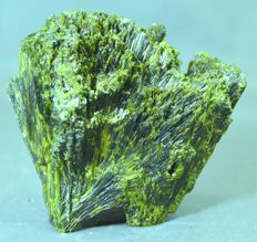 New Find Top Quality Tree Shape Epidote Crystal Bunch - 73 x 73 x 42 mm - 228 gm