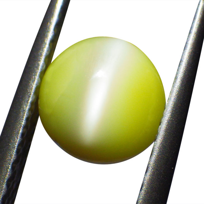 Cat's Eye Chrysoberyl - 1.21 ct