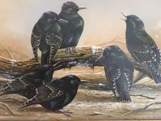 "Jan Weenink (1946-) - ""Starlings"""