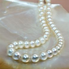 Necklace with Japanese round cultured Akoya pearls, Ø 8.5 x 9 mm – 750 yellow gold clasp