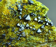 New find Magnetite and Green Diopside Crystals Bunch on Matrix  - 115 x 97 x 47mm - 757 gm
