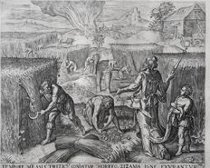 Pieter Jalhea Furnius (16th-17th century) after Gerard Groenning published by Gerard de Jode (1509–1591) published by Nicolaes Visscher I (1618, Amsterdam – 1679, Amsterdam)  - The burning of the tares - c. 1568