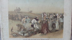 Falconry Fauconnerie Rochussen antique 19th century Zeeland school print with depiction of hawking
