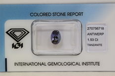 Tanzanite - 1.53 ct - No Reserve Price