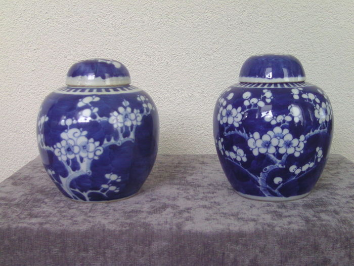 Two porcelain ginger jars - China - early 20th century