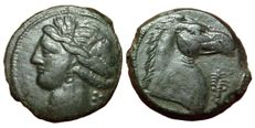 Greek Antiquity - Zeugitania, Carthage - Æ (19mm; 4,00g.), c. 300-264 BC - Sicily? mint - Head Tanit / Horsehead - SNG Cop. 175 var.