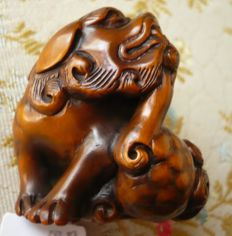 Netsuke – Shishi in lacquered box tree – signed by Gyokusho – Japan – Early 20th