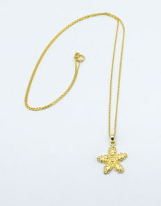 14 carat yellow gold chain with star pendant  - 45 cm