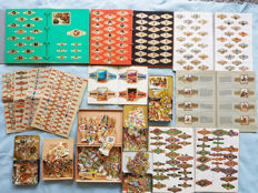 Very large collection cigar bands & cigar bands & series - more than 7300 items