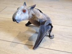 Taxidermy - Hammer-headed Bat, male - Hypsignathus monstrosus - 19 x 20cm - 268gm