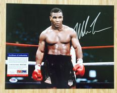 Mike Tyson /  Original Signed Photo ( 28x35cm ) - with Certificate of Authenticity PSA/DNA