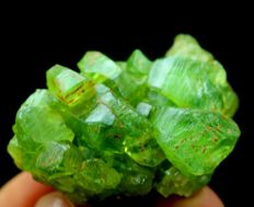 Bright Green Peridot Crystal Cluster  - 40 x 27 x 18mm - 34gm - 170 cts