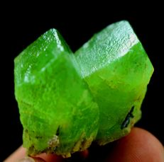 Top Grade Undamaged & Double terminated Unique V-Shaped Peridot Crystals Specimen - 48 x 25 x 17mm - 26gm - 130 cts
