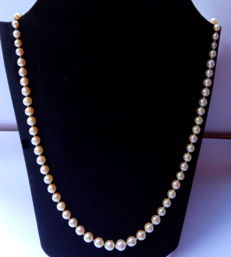 Pearl necklace made of saltwater pearls with a 18 kt gold clasp and safety chain – 1st half 20th century – No reserve price