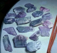 Lot of Fine Etched Kunzite with Facet Grade Clarity - 40 to 75 mm - 842gm (19)