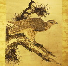 "Antique hanging scroll - "" Hawk on a pine tree branch"", by Tani Buncho (1763-1841) - Japan - ca. 1790 (Edo Period)"