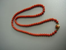 Precious coral necklace with a gold clasp, set with precious coral