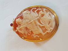 Shell cameo brooch with ruby and 18 kt yellow gold setting – measurements: 6 x 4.5 cm