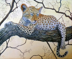 Gary Wakeham - Young Leopard in Tree