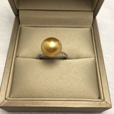 Nanyang seawater pearls, 18K gold ring. diameter: 17.6 mm
