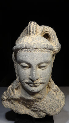 A Large Gray Schist Head of Bodhisattva Gandhara Kushan Period - Pakistan - ca. 300 A.D
