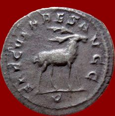 Roman Empire - Philip I (244 - 249 A.D.) silver antoninianus (3,80 g, 22 mm) minted in Rome in 248 A.D. Special emission, 5th. officina. SAECVLARES AVGG. V. Stag to right.