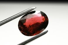 1,55 carats – Purplish Red Tourmaline  (Rubellite)