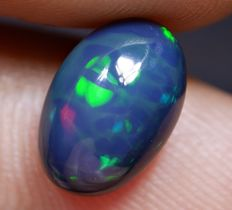 Brilliant Hologram Party Color Swamp Pattern Welo Opal - 10 x 7 x 5mm - 1.85ct
