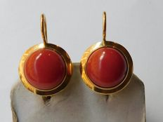 18 kt gold earrings with coral. 22 mm long, 13.5 mm wide and 16 mm deep