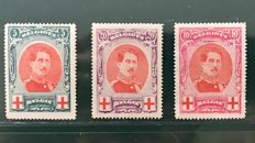 Belgium 1915 – Albert I in a large medallion incl. OBP 133 with variations – OBP 132/134