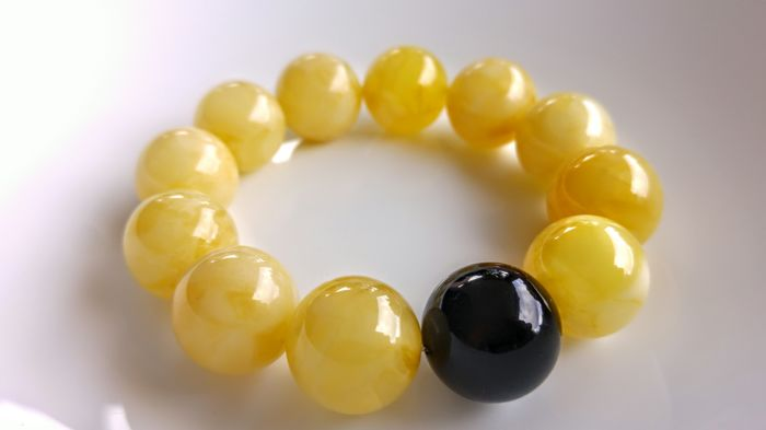 Baltic Amber round beads bracelet, Egg yolk with one Dark Cherry accent bead, Bracelet diameter ca. 55 mm,