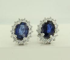 14 kt white gold rosette ear studs set with sapphire and brilliant cut diamonds, in total approx. 0.50 ct ****NO RESERVE PRICE***