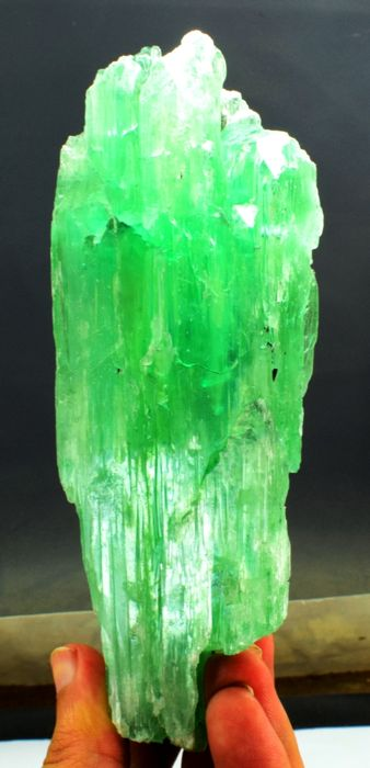 Huge Size Undamaged Water Eaten Lush Green Kunzite Hiddenite Crystal - 150 x 47 x 28mm - 429 gm