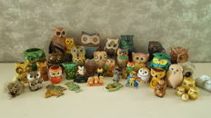Special owls - 43 pieces in owl collection