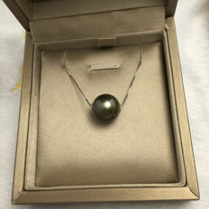 925 Silver. Tahiti Black Sea Pearl necklace. Pearl diameter: 12.5 mm.