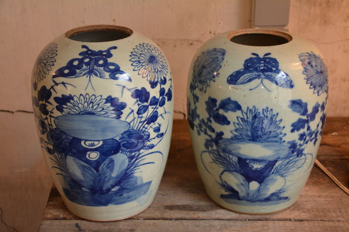 Pair of blue white Celadon ginger jars - China - 19th century