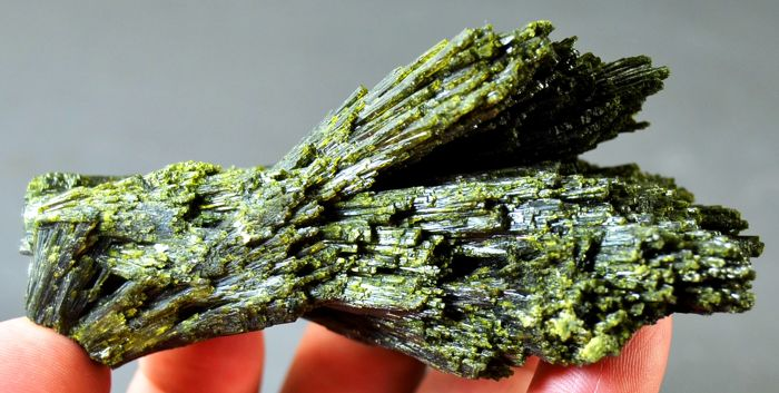 New Find - Tree Shape Green Epidot Crystals Cluster - 100 x