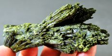 New Find - Tree Shape Green Epidot Crystals Cluster - 100 x 48 x 42 mm - 160gm