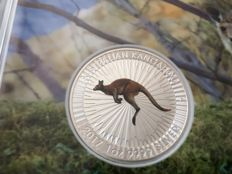 Australia - 1 Dollar 2017 'Kangaroo' coloured edition - 1 oz silver