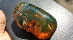 Natural, polished golden green one side polished Mexican amber - 9.0 x 5.5 x 3.7 cm - 92.5 g
