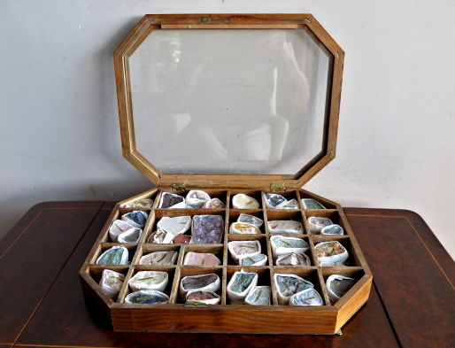 Display case with forty various minerals, chest/box with suspension option