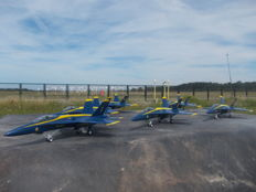 Complete Blue Angels Navy Flight Demonstration Squadron Team of the U.S. Navy