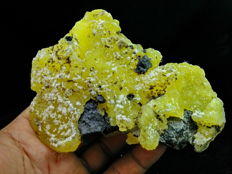 910.80 CT ~ Unheated & Natural~ Ultra Rare ~ Yellow BRUCITE Mineral Specimen
