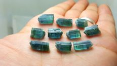 Indicolite blue with green tourmaline crystals lot -  52 ct
